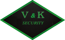 VK Security logo